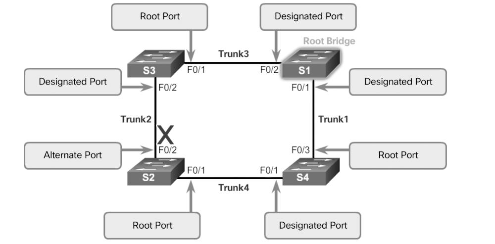 In a network topology of switches, all nonroot bridge switches have a single root port chosen, and that port provides the lowest-cost path back to the root bridge.