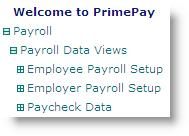 2.0 Payroll Menus Use the Payroll menu to access employee payroll and demographic data: Employee Payroll Setup The following menus display setup information specific to each employee: Employee