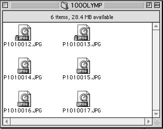 Downloading images to your computer Image files (JPEG files) with files names such as P1010001.JPG are displayed.