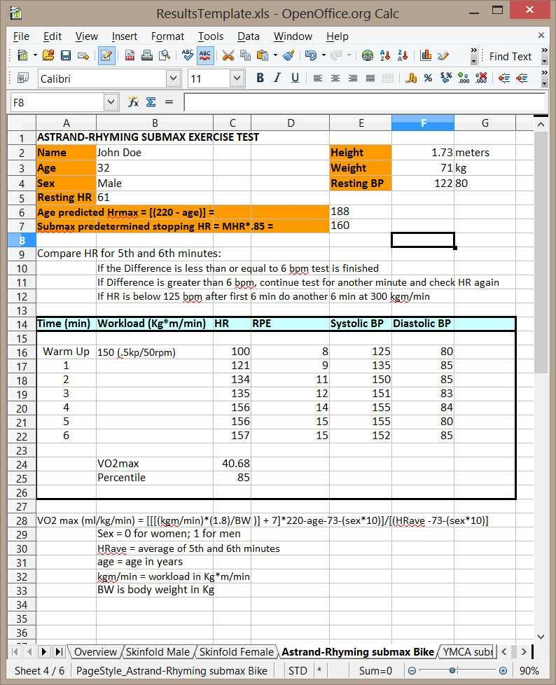 This image is a screenshot of an example excel file output for the Astrand-Rhyming test. Note the tabs located at the bottom of the file.