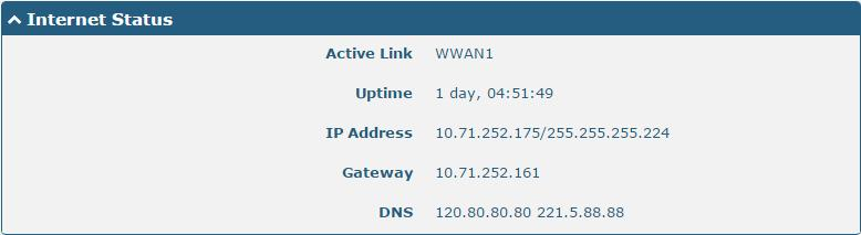 Internet Status Item Active Link Uptime IP Address Gateway DNS Internet Status Description Show the current active link. Show the current amount of time the link has been connected.