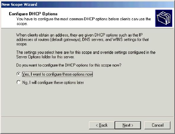 10. On the Configure DHCP Options page, choose Yes,