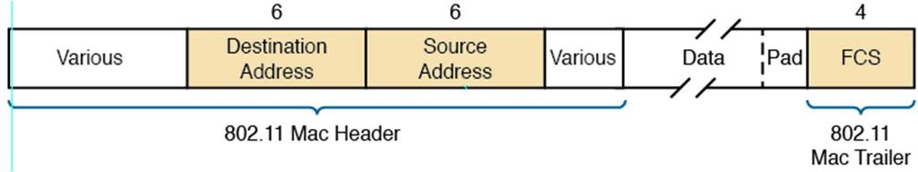 Exploring WLAN Common Features: Associating WLAN frames and addresses 802.11 standard defines frame format used by all physical layer standards Several 802.