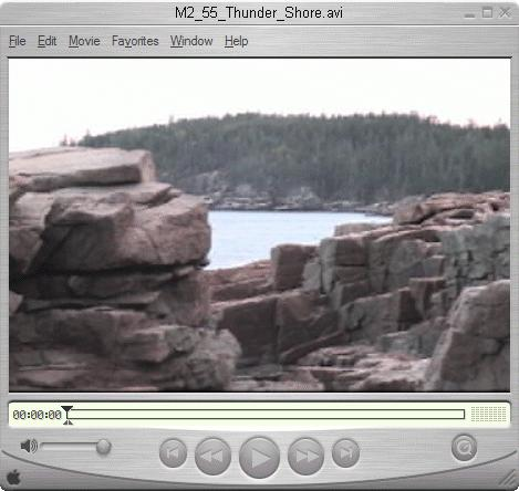 MediaStudio Pro Format-Specific Downloads QuickTime Player Pro, $29 Win Media Encoder RealProducer, Plus $199
