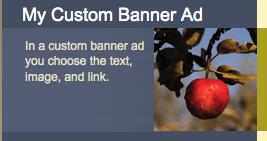 Banner Ad Types Custom Banner Ad 3. Choose create and connect.