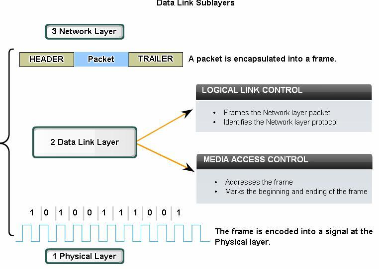 Data Link Layer Connecting Upper Layer