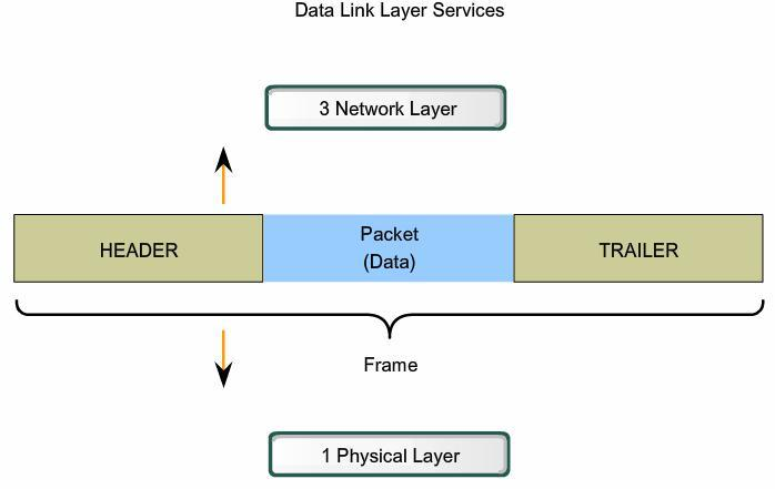 Data Link Layer Creating a Frame The Data Link layer prepares a packet for transport across the local media by encapsulating it with a header and a trailer to create a frame Data Link layer frame: