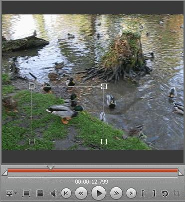 In Movavi Video Editor you can crop the video picture.