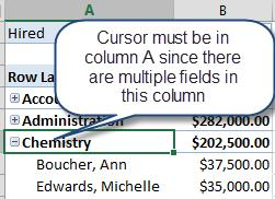 Expand/Collapse Data If the data within a PivotTables has multiple fields within a Row area, there will be a small + (plus) or (minus) button that will display to the left of the top Level fields.
