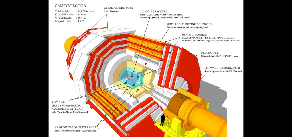 The Compact Muon Solenoid (CMS) detector at the