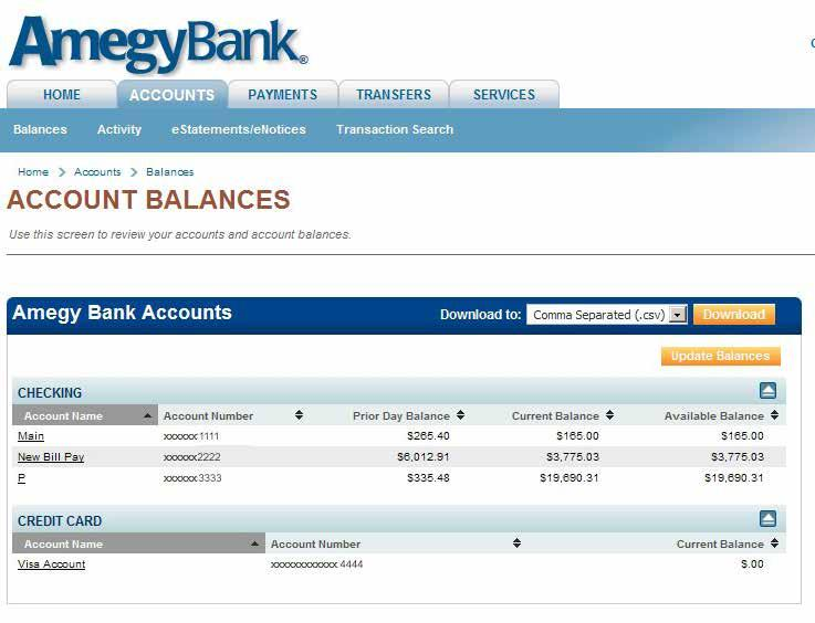 ACCOUNTS TAB: Account Balances This tab is used to find account information, balances, account activity, and edocuments.