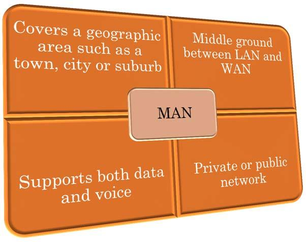 AREA NETWORKS (MAN) 24