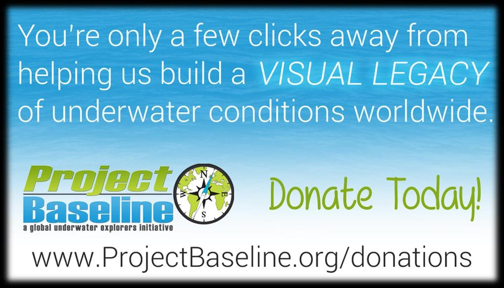 This resource was made possible by Project Baseline donors and Global Underwater Explorers, a 501(c)(3) non-profit