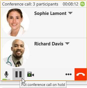 Audio and video calls Conference calls Suspending the conference call To