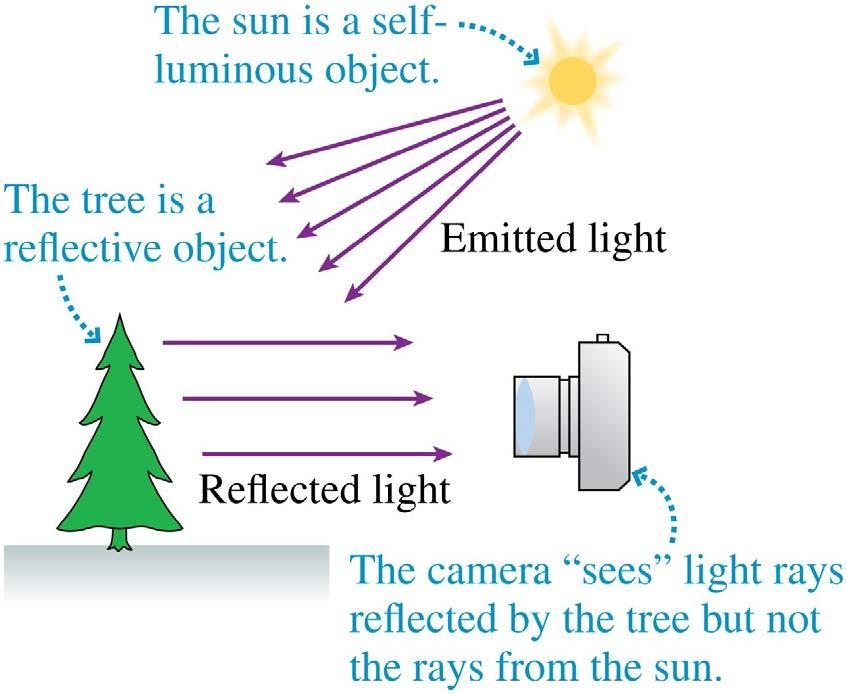 Objects Objects can be either self-luminous, such as the sun, flames,
