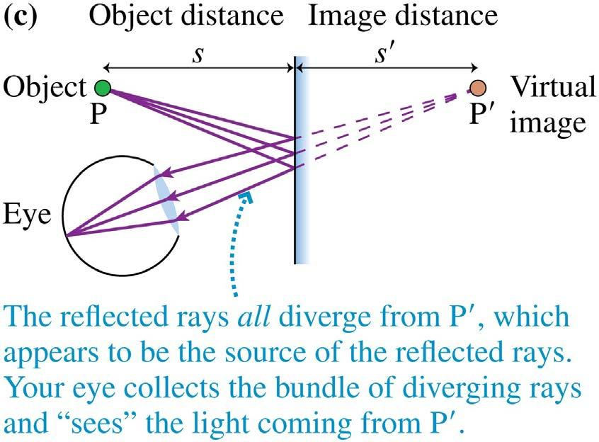 The Plane Mirror Consider P, a source of rays that reflect from a mirror.
