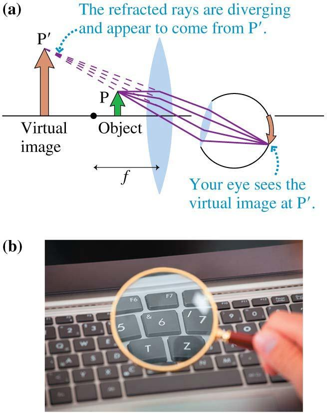 Virtual Images You can see a virtual image by looking through the lens.