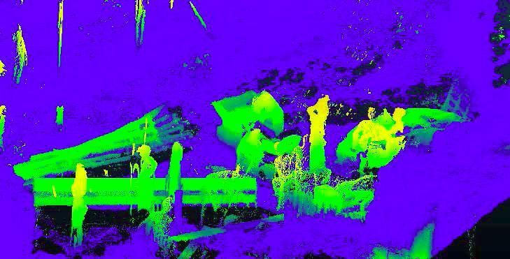 Figure 7 An example of people noise in the laser scan. It is important to note that the photos and the laser point cloud were not captured at the same time.