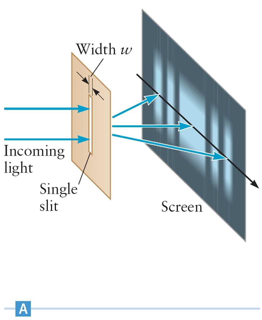 Young Assume the single slit has a width, w.