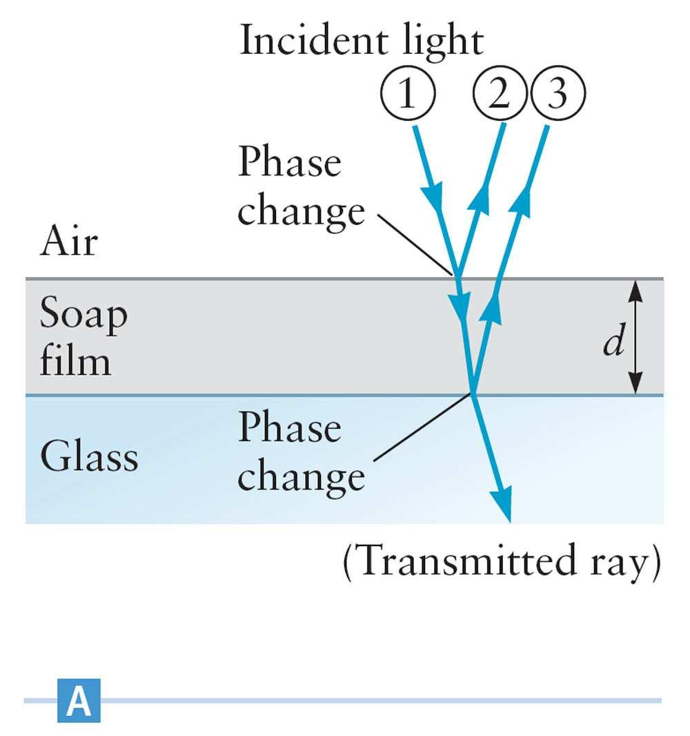 Young Assume a thin soap film rests on a flat glass surface.