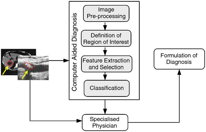 Δ Goals of medical image analysis techniques: Quantification: Measuring the features on medical images, eg., helpng radiologist obtain measurements from medical images (e.g., area or volume).