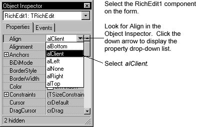 The RichEdit component now fills the form so you have a large text editing area.