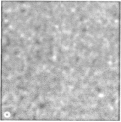 (a) (b) (c) Figure 10. Random noise example. (a) First random noise image in the sequence.