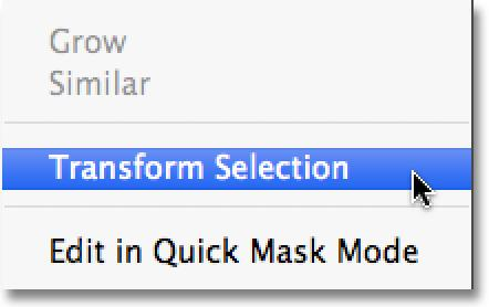 With the document selected, go back up to the Select menu and this time, choose Transform Selection: Go to Select > Transform Selection.