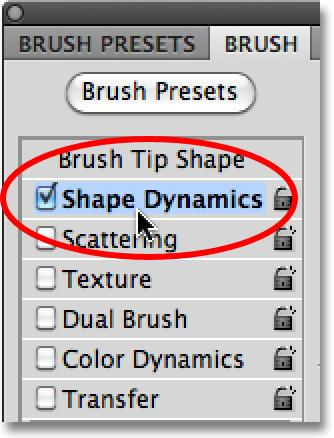 Shape Tool was selected. Scroll through the brush tip thumbnails until you see the three snowflake brushes we just created. They should be at the bottom of the list.