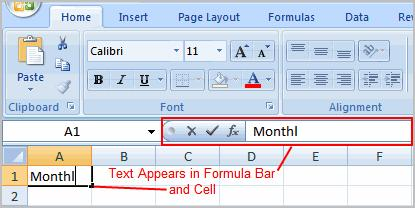 Enter text into the cell using your keyboard. The text appears in the cell and in the formula bar.