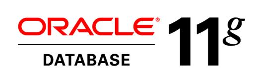 An Oracle White Paper February 2011