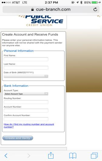 You will be able to type in your information from here to receive funds.