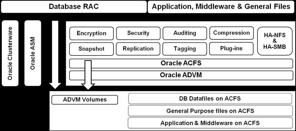 Oracle ACFS High Level Architecture Oracle ACFS is a complete storage solution that offers performance, simple manageability and high availability.