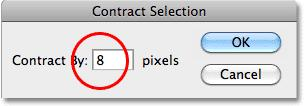 Contract Selection reduces the size of a selection outline by the amount you specify. The selection outline now appears smaller inside the shape.