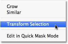 Transform Selection command. Go up to the Select menu at the top of the screen and choose Transform Selection: Go to Select > Transform Selection.
