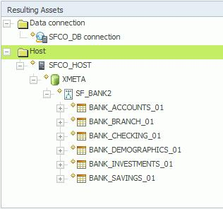Figure 14. Resulting assets for the import area SFCO_DB 10. Click the Repository Management tab in the top Navigation menu to display the imported assets. a. Select Browse Assets > Implemented Data Resources > SFCO_HOST > SFCO_DB.