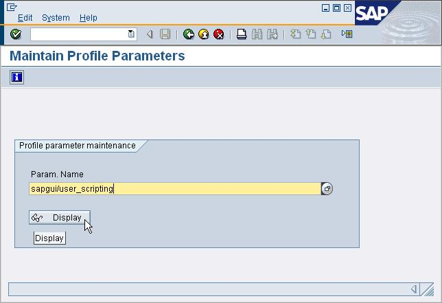 Activate New Profile Parameter After the new profile parameter sapgui/user_scripting was created