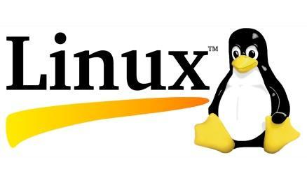 hardware support rapidly ramps adoption 1993 More than 100 developers contribute code to Linux 1991 The Linux kernel is developed to acces large UNIX servers independent of an operating system 2013