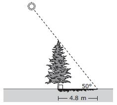 Which measure is closest to the value of y? A. 5.5 ft. B. 3.1 ft. C. 4.3 ft. D. 7.5 ft. MA.912.T.2.1 18. A tree s shadow is 4.