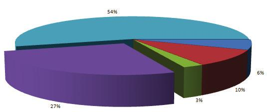Formatting a Data Series We can add data labels to our Pie chart to further format the data. 1.