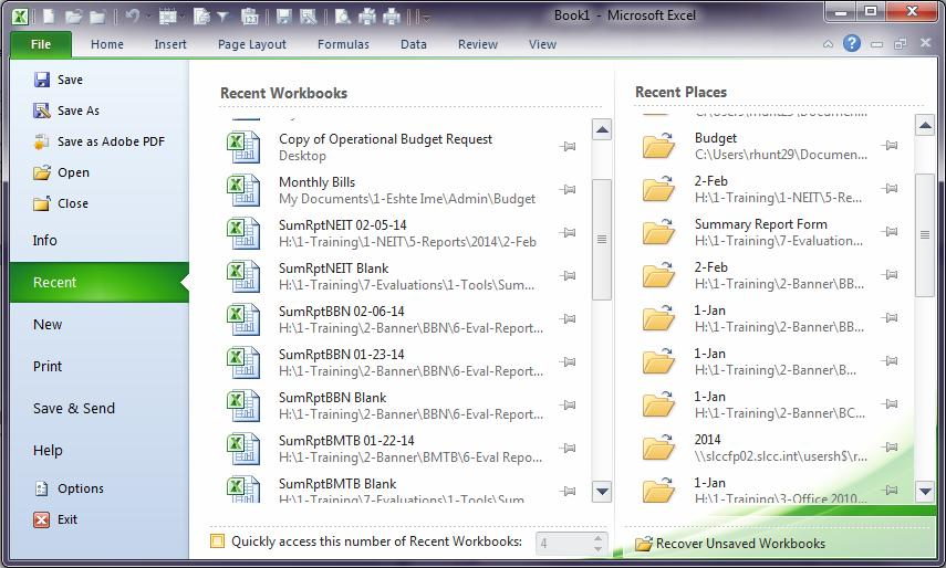 Clicking the File tab displays the Menu shown on the right. Note: The Recently Workbooks and Places on the right. File tab Options and their Description Option Description Saves the workbook in the.
