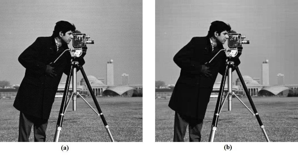 Figure 5.20: Cameraman (a) Original and (b) reconstructed after compressed using MATC-CVQ coder (bpp =0.430