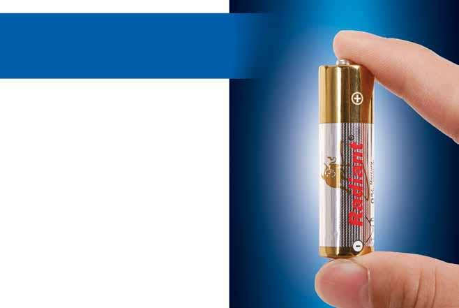 Alkaline dry-cell battery 5-plus years of OEM services With more than five years of OEM experience and a return rate of less than 1 percent, we know exactly what buyers are looking for.