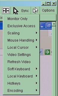 Sync mouse Activates the mouse synchronization process. Choose this option in order to synchronize the local with the remote mouse cursor.