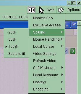 Scaling Allow you to scale down the Remote Console. You can still use both mouse and keyboard, however the scaling algorithm will not preserve all display details. Mouse Handling Figure 5-9.