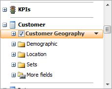 c. Find Customer Geography in the check box list and check it Figure 14