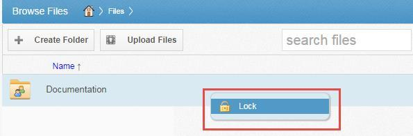 LOCKING FILES AND FOLDERS File locking allows users to place locks on files and folders in Team Shares.