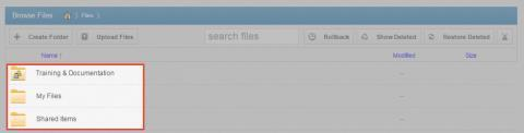 2. In the Browse Files page, you will see a list of all of your files, folders, and Team Shares. 3.