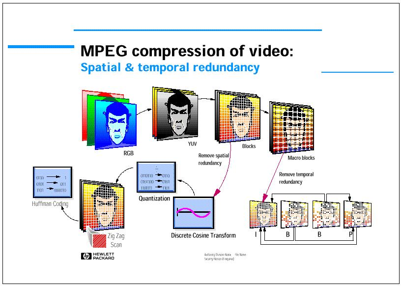 MPEG Video Coding