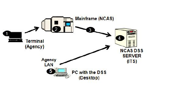 NCAS and DSS Overview The DSS Flow Diagram The following diagram illustrates the overall NCAS process flow of information from data input to data retrieval using the DSS. 1.